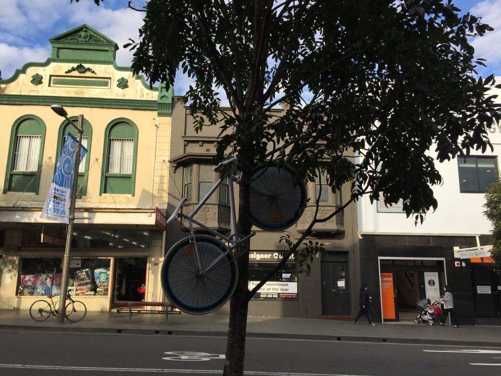 76.Bike tree